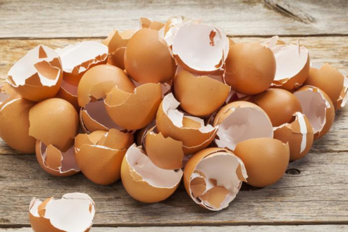 В раковину не следует смывать яичную скорлупу.